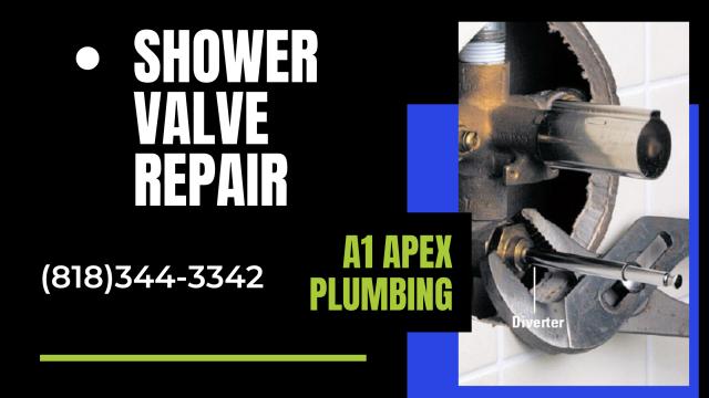 Shower Valve Repair